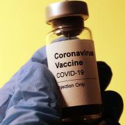 Koronavírus vakcina - felmérés